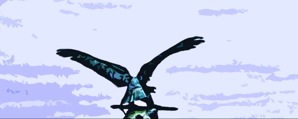 NU 200311 Drohnen